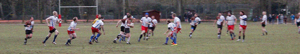 rugby-news